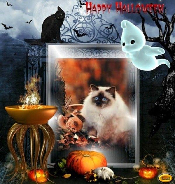 Une dernière créa Halloween