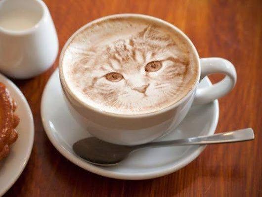 Un petit caf??