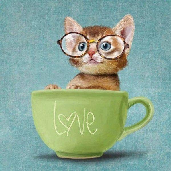 Un petit caf?!