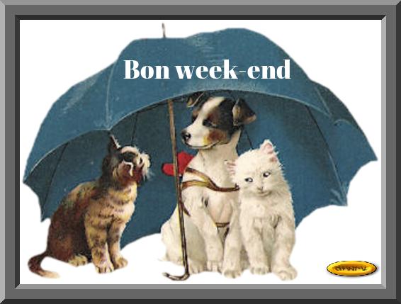 Je vous souhaite un bon week-end